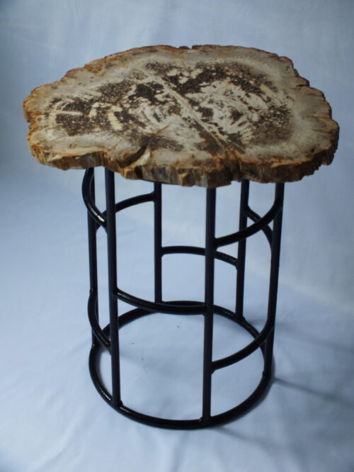 Fossil Wood side table