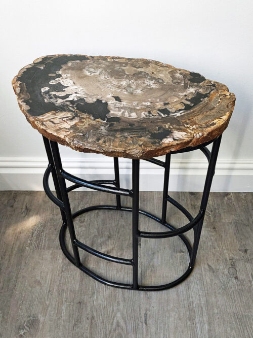 Fossil Wood Table