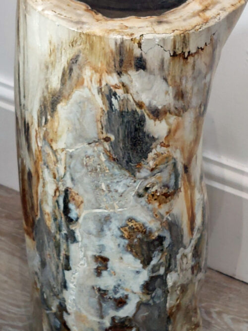 Fossil Wood plinth or table
